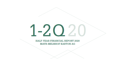 Report for the 1st Half-Year 2020